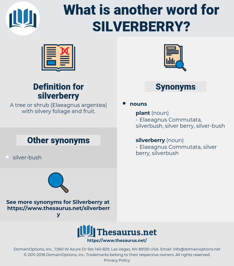 silverberry, synonym silverberry, another word for silverberry, words like silverberry, thesaurus silverberry