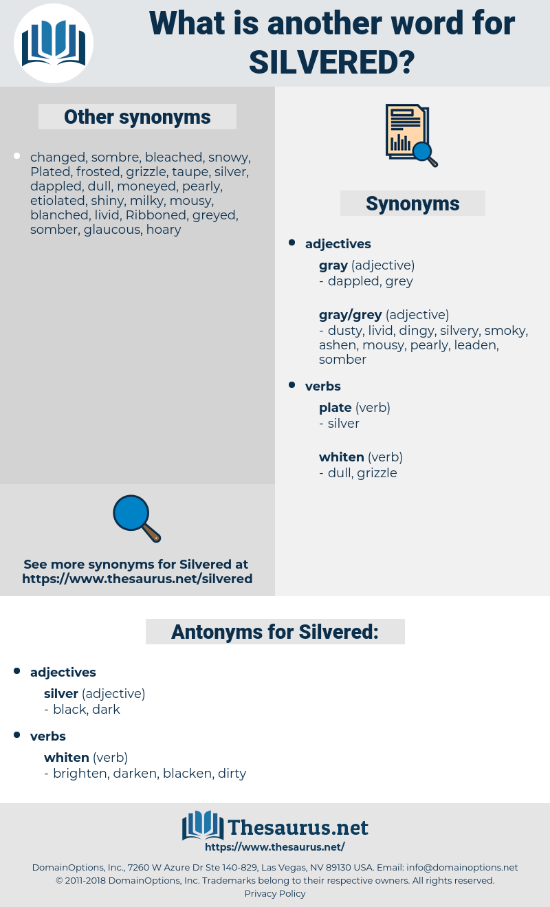 Silvered, synonym Silvered, another word for Silvered, words like Silvered, thesaurus Silvered
