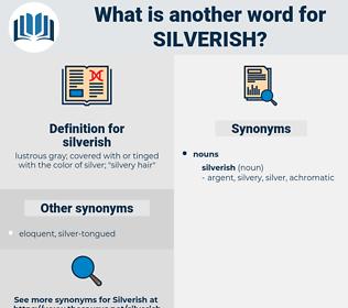 silverish, synonym silverish, another word for silverish, words like silverish, thesaurus silverish