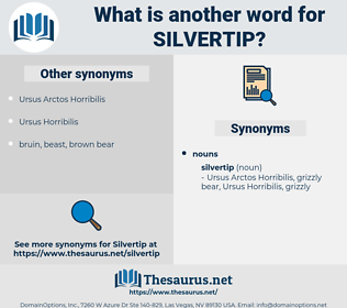 silvertip, synonym silvertip, another word for silvertip, words like silvertip, thesaurus silvertip