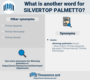 Silvertop Palmetto, synonym Silvertop Palmetto, another word for Silvertop Palmetto, words like Silvertop Palmetto, thesaurus Silvertop Palmetto