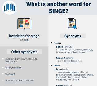 singe, synonym singe, another word for singe, words like singe, thesaurus singe