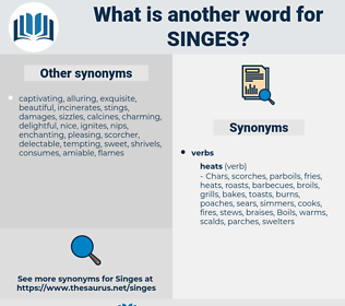 singes, synonym singes, another word for singes, words like singes, thesaurus singes