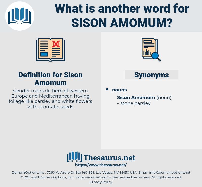 Sison Amomum, synonym Sison Amomum, another word for Sison Amomum, words like Sison Amomum, thesaurus Sison Amomum