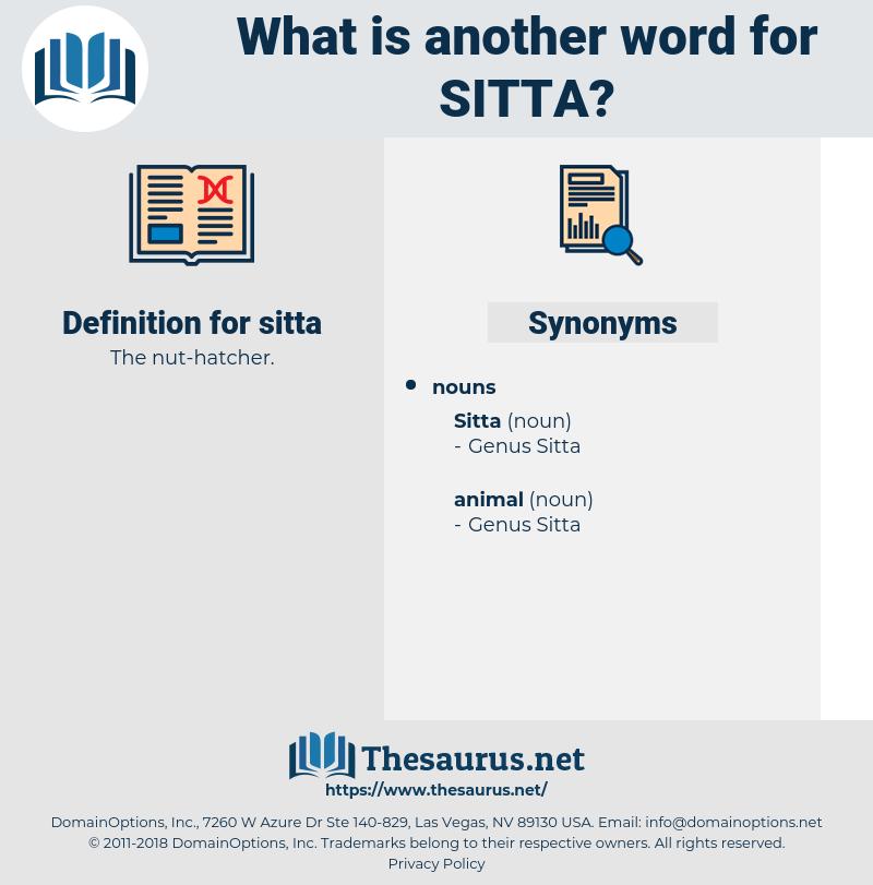 sitta, synonym sitta, another word for sitta, words like sitta, thesaurus sitta
