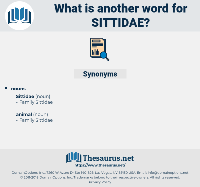 sittidae, synonym sittidae, another word for sittidae, words like sittidae, thesaurus sittidae