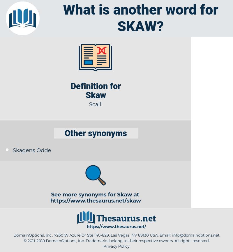 Skaw, synonym Skaw, another word for Skaw, words like Skaw, thesaurus Skaw