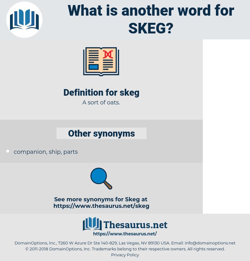 skeg, synonym skeg, another word for skeg, words like skeg, thesaurus skeg