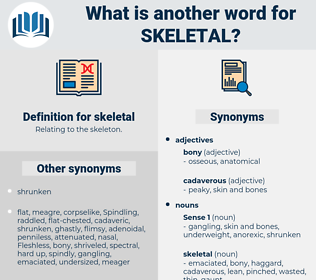 skeletal, synonym skeletal, another word for skeletal, words like skeletal, thesaurus skeletal