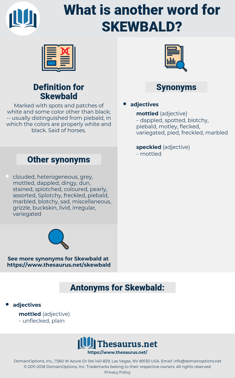Skewbald, synonym Skewbald, another word for Skewbald, words like Skewbald, thesaurus Skewbald