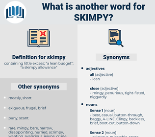 skimpy, synonym skimpy, another word for skimpy, words like skimpy, thesaurus skimpy