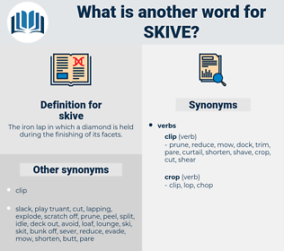 skive, synonym skive, another word for skive, words like skive, thesaurus skive