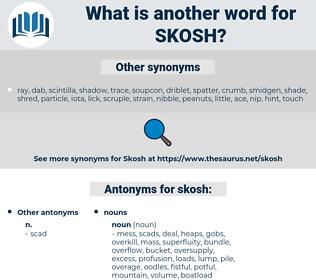 skosh, synonym skosh, another word for skosh, words like skosh, thesaurus skosh