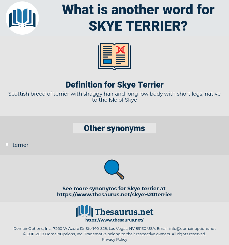 Skye Terrier, synonym Skye Terrier, another word for Skye Terrier, words like Skye Terrier, thesaurus Skye Terrier
