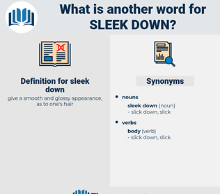 sleek down, synonym sleek down, another word for sleek down, words like sleek down, thesaurus sleek down