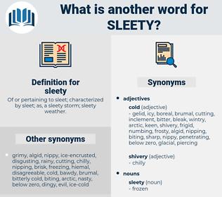 sleety, synonym sleety, another word for sleety, words like sleety, thesaurus sleety