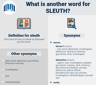 sleuth, synonym sleuth, another word for sleuth, words like sleuth, thesaurus sleuth