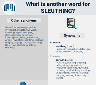 sleuthing, synonym sleuthing, another word for sleuthing, words like sleuthing, thesaurus sleuthing