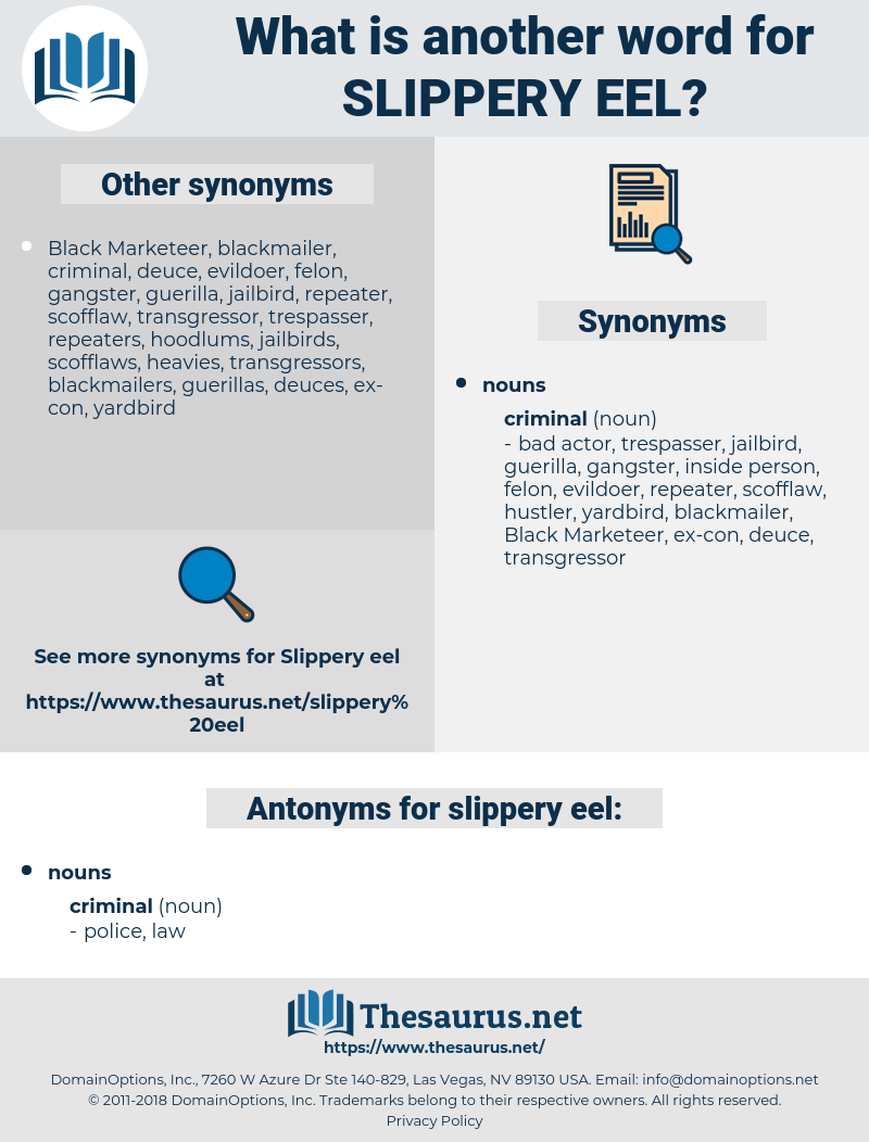slippery eel, synonym slippery eel, another word for slippery eel, words like slippery eel, thesaurus slippery eel