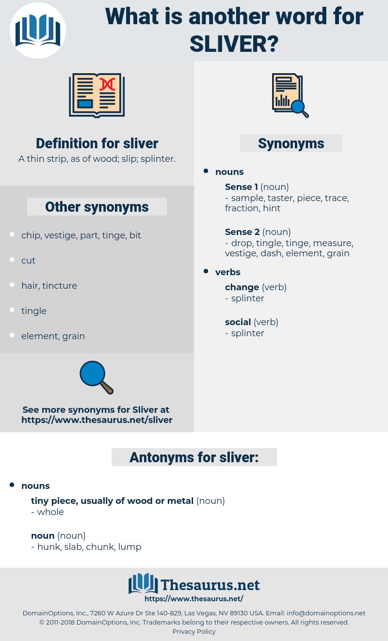 sliver, synonym sliver, another word for sliver, words like sliver, thesaurus sliver