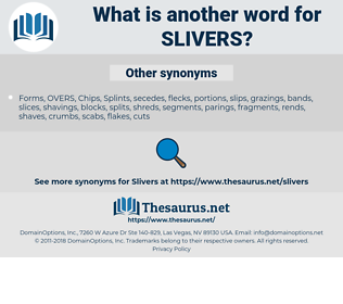 slivers, synonym slivers, another word for slivers, words like slivers, thesaurus slivers