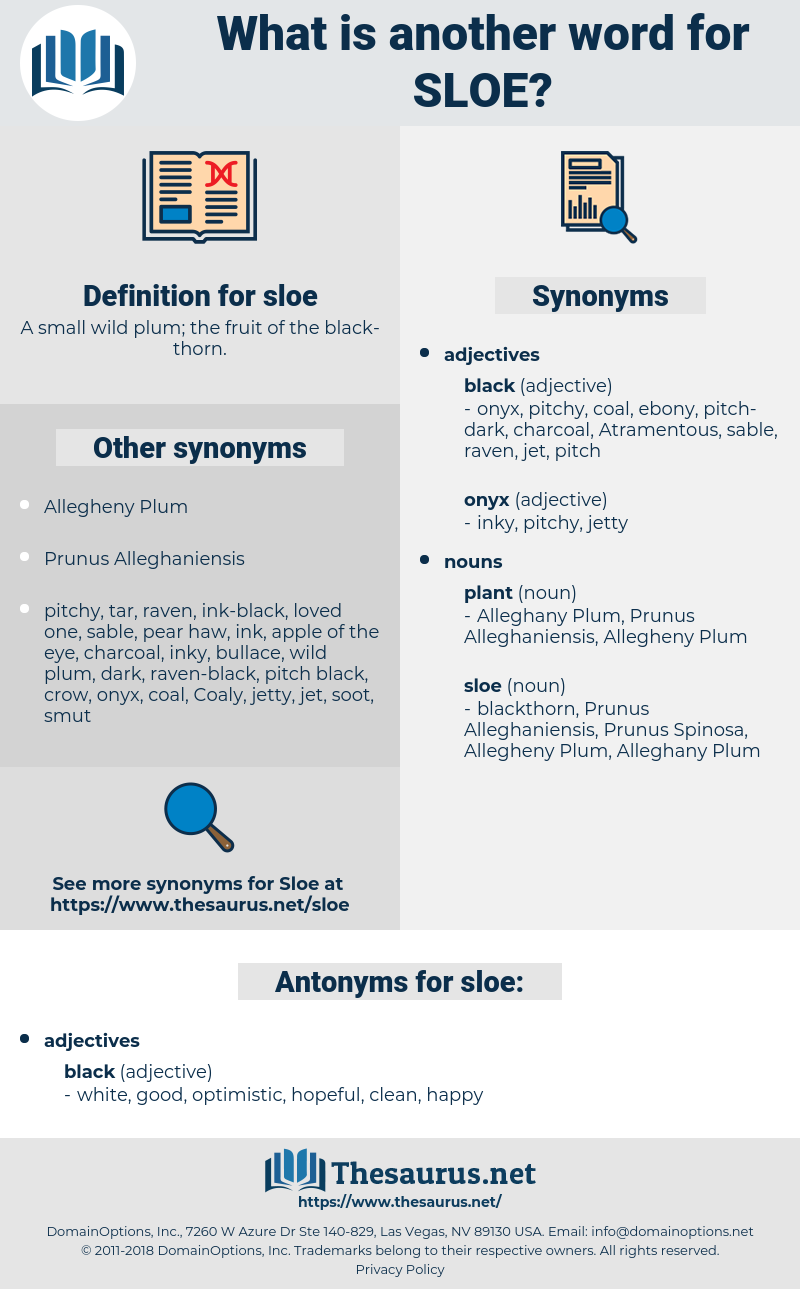 sloe, synonym sloe, another word for sloe, words like sloe, thesaurus sloe