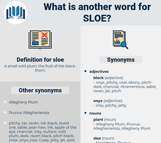 sloe, synonym sloe, another word for sloe, words like sloe, thesaurus sloe