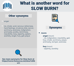 slow burn, synonym slow burn, another word for slow burn, words like slow burn, thesaurus slow burn