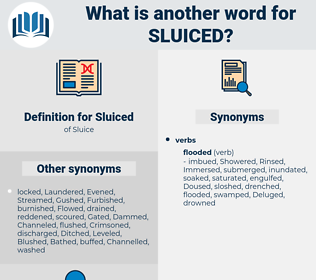 Sluiced, synonym Sluiced, another word for Sluiced, words like Sluiced, thesaurus Sluiced