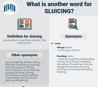 sluicing, synonym sluicing, another word for sluicing, words like sluicing, thesaurus sluicing