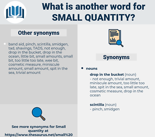 small quantity, synonym small quantity, another word for small quantity, words like small quantity, thesaurus small quantity