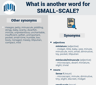 small-scale, synonym small-scale, another word for small-scale, words like small-scale, thesaurus small-scale