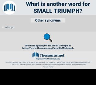 small triumph, synonym small triumph, another word for small triumph, words like small triumph, thesaurus small triumph