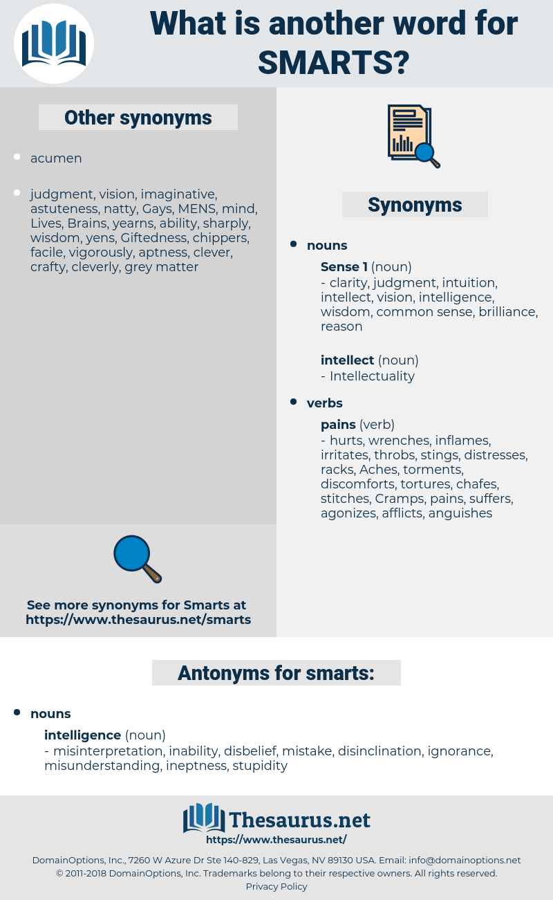 smarts, synonym smarts, another word for smarts, words like smarts, thesaurus smarts