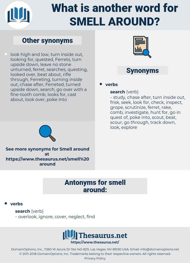 smell around, synonym smell around, another word for smell around, words like smell around, thesaurus smell around