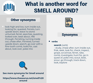 smell around, synonym smell around, another word for smell around, words like smell around, thesaurus smell around