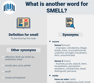 smell, synonym smell, another word for smell, words like smell, thesaurus smell