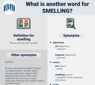 smelling, synonym smelling, another word for smelling, words like smelling, thesaurus smelling