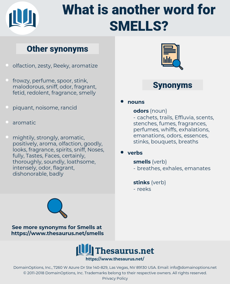 Smells, synonym Smells, another word for Smells, words like Smells, thesaurus Smells