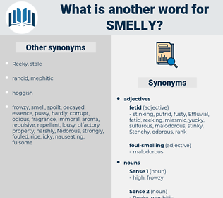 smelly, synonym smelly, another word for smelly, words like smelly, thesaurus smelly