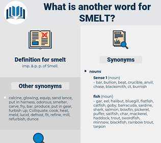smelt, synonym smelt, another word for smelt, words like smelt, thesaurus smelt