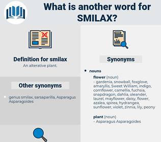 smilax, synonym smilax, another word for smilax, words like smilax, thesaurus smilax