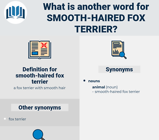 smooth-haired fox terrier, synonym smooth-haired fox terrier, another word for smooth-haired fox terrier, words like smooth-haired fox terrier, thesaurus smooth-haired fox terrier