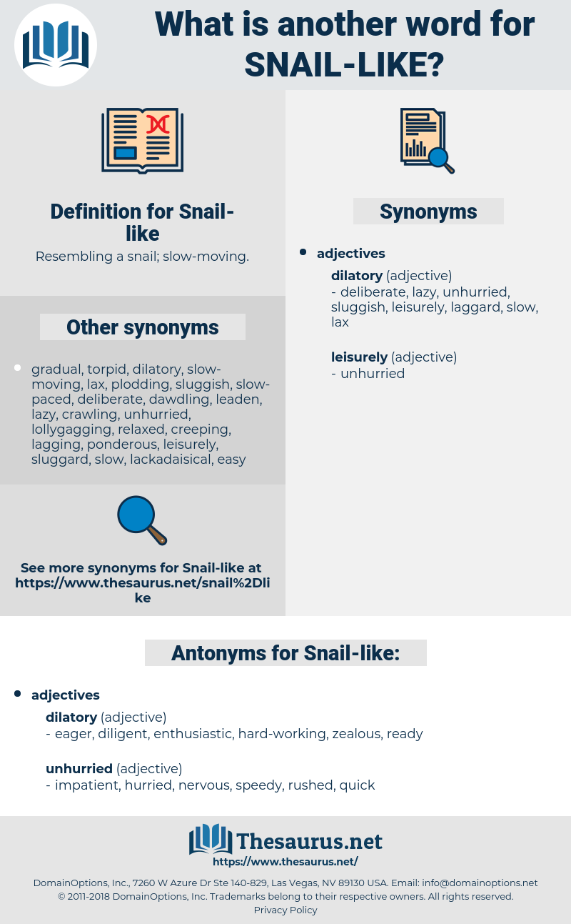 Snail-like, synonym Snail-like, another word for Snail-like, words like Snail-like, thesaurus Snail-like