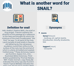 snail, synonym snail, another word for snail, words like snail, thesaurus snail