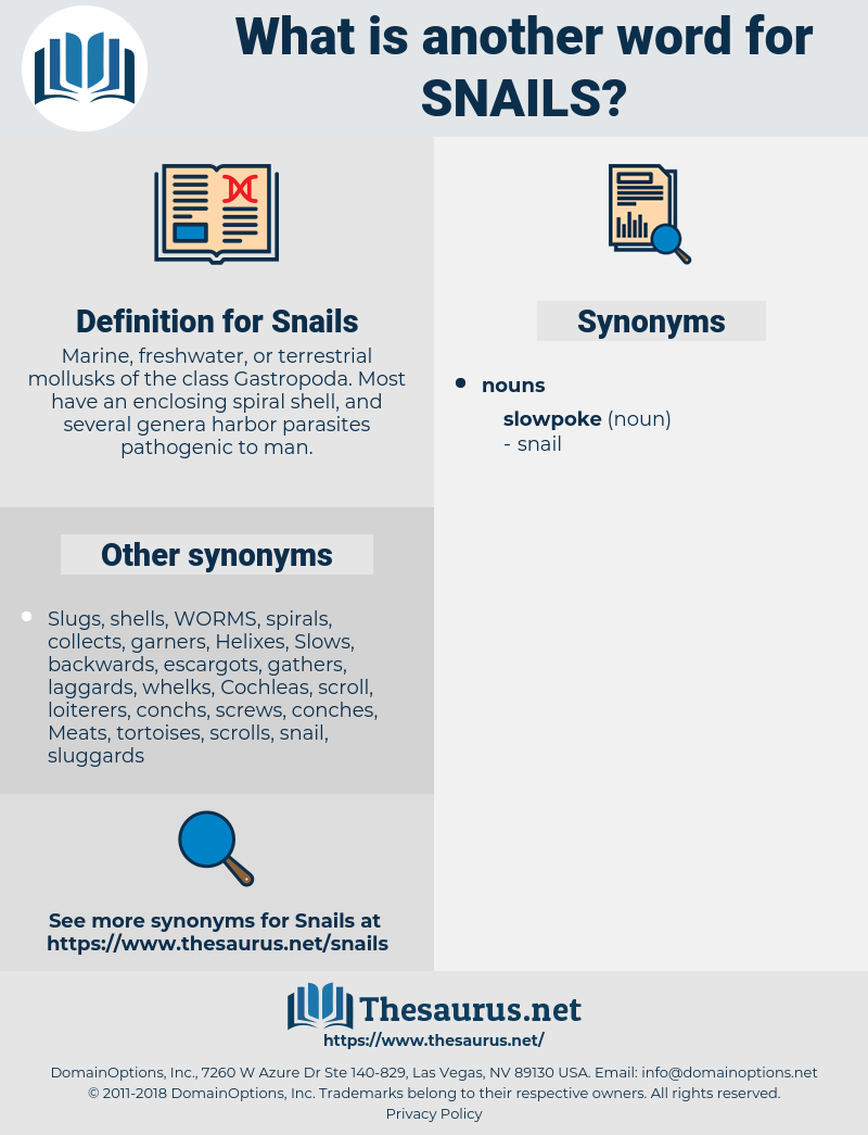 Snails, synonym Snails, another word for Snails, words like Snails, thesaurus Snails