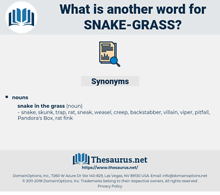 snake grass, synonym snake grass, another word for snake grass, words like snake grass, thesaurus snake grass