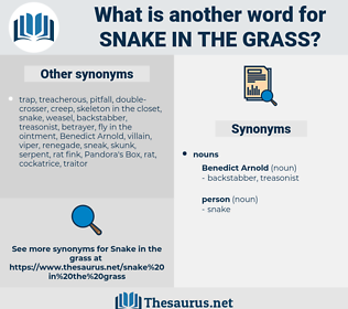 snake in the grass, synonym snake in the grass, another word for snake in the grass, words like snake in the grass, thesaurus snake in the grass