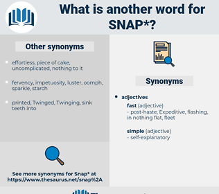 snap, synonym snap, another word for snap, words like snap, thesaurus snap