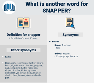 snapper, synonym snapper, another word for snapper, words like snapper, thesaurus snapper